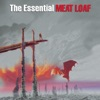 Meat Loaf - Paradise By the Dashboard Light  With Ellen Foley