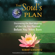 Robert Schwartz - Your Soul's Plan: Discovering the Real Meaning of the Life You Planned Before You Were Born (Unabridged)