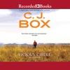 Vicious Circle AudioBook Download