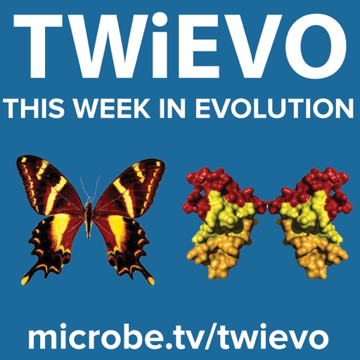 Cover image of This Week in Evolution