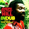 "Joseph ""Culture"" Hill in Dub (Mixed by Bunu Shoppist)"