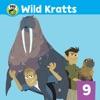 Wild Kratts, Vol. 9 wiki, synopsis