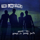 The Libertines - Fame And Fortune
