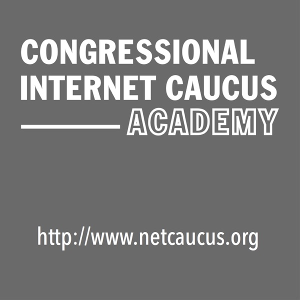 Congress Hears Tech Policy Debates