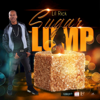Lil Rick - Sugar Lump artwork