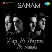 [Download] Aap Ki Nazron Ne Samjha MP3