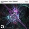 Jay Hardway & MOTi