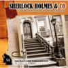 Sherlock Holmes & Co - Folge 34: Das Haus der Verdammten kunstwerk