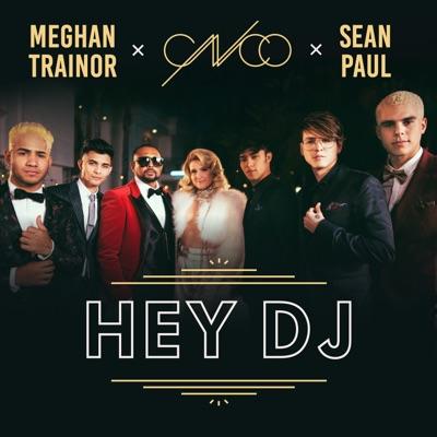 Hey DJ (Remix) - Single - Sean Paul