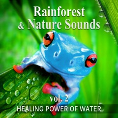 Rainforest & Nature Sounds, Vol. 2: 50 Healing Power of Water (Rain, River, Ocean and Sea) Music for Sleep and Relaxation, Free Your Mind & Relax Better, Deep Waves Meditation