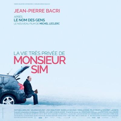 La vie très privée de monsieur Sim (Bande originale du film) - Vincent Delerm