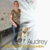 Audrey - Blind Vertrouwen artwork