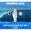 Reflections of My Life - Single