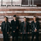 Dare You to Move / Meant to Live artwork