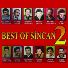 Best Of Sincan 2