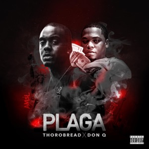 Plaga (feat. Don Q) - Single Mp3 Download