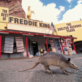 Big Legged Woman - Freddie King