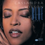 Cassandra Wilson - Come On In My Kitchen