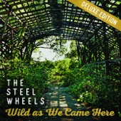 The Steel Wheels - Take Me to the Ending