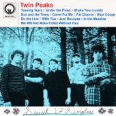 Twin Peaks - Shake Your Lonely