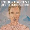 Piers Faccini - The Beggar & the Thief artwork