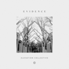 Evidence - Elevation Collective