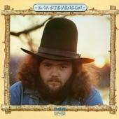 B.W. Stevenson - Texas Morning