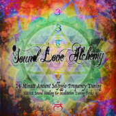 14 Minute Sound Healing - Ancient Solfeggio Frequency Tuning Forks (feat. Shylo ॐ Love)