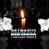 Nenvahoa (Touliver Remix)
