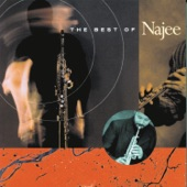 Najee - Have You Ever Loved Somebody