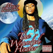 Ms. Incredible - Recollecting Recollections
