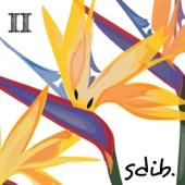 SDIB - Cruise Day