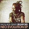 Neo Evolution Ep - Raoul K & Timmy Regisford