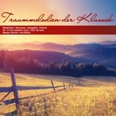 "Béla Bánfalvi - Moments musicaux, D. 780: 3. Allegro moderato ""Air russe"" (Arr. for Orchestra)"