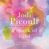 A Spark of Light: A Novel (Unabridged) AudioBook Download