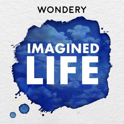 Imagined Life image
