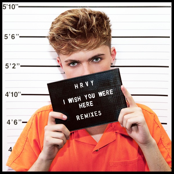 Hrvy - I Wish You Were Here (Until Dawn Mix)