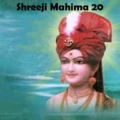 Shreeji Mahima 20
