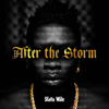 After the Storm - Shatta Wale