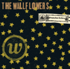 The Wallflowers - One Headlight artwork