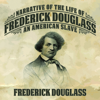 Frederick Douglass - Narrative of the Life of Frederick Douglass: An American Slave  artwork