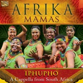Afrika Mamas - Tata Madiba
