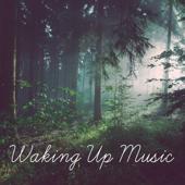 Calming Wake