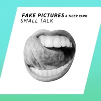Small Talk - FAKE PICTURES / DENIS FIRST