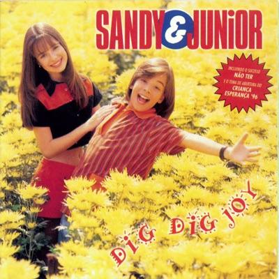 Dig Dig Joy - Sandy & Junior