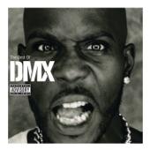 The Best Of DMX artwork
