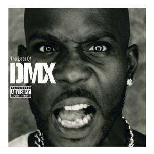 X Gon' Give It to Ya - DMX