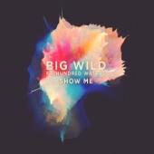 Big Wild - Show Me