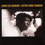 John Lee Hooker - I Believe I'll Lose My Mind