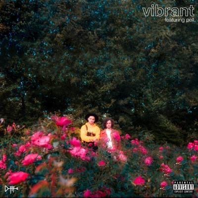 Vibrant (feat. Pell) - Single MP3 Download